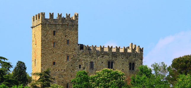15-Castello-di-Baiso